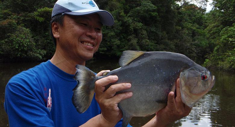 peche-piranha-4